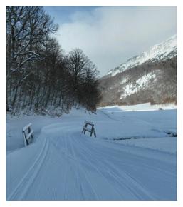 Copa de España de Esquí de Fondo FIS. Trofeo Espacio Nórdico Linza.